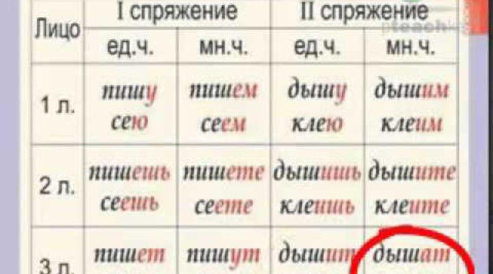Видеоурок Спряжение глагола в русском языке