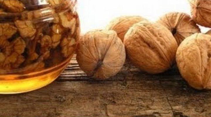 Пища Богов: орехи и мёд