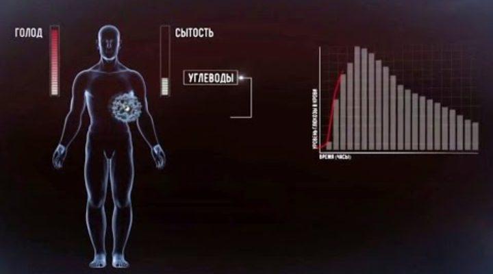Химия нашего тела сахар 720